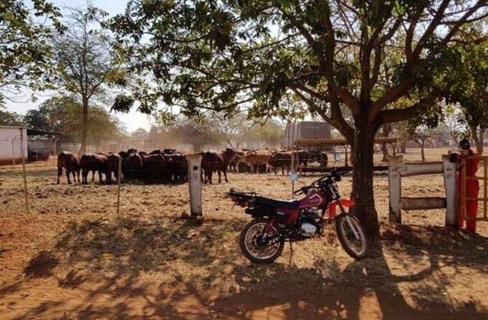 607Ha Farm For Sale in Mazabuka