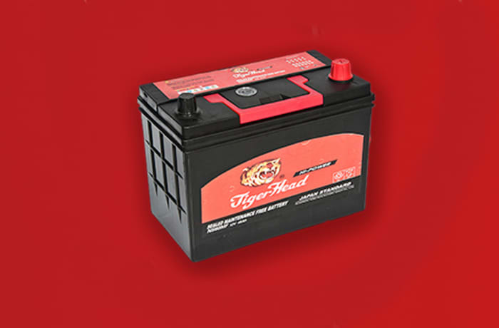 Tiger  Black Car Battery