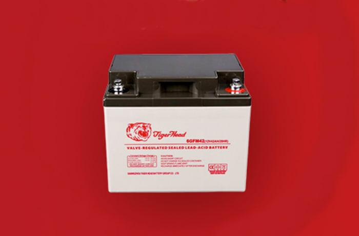 Tiger Maintenance Free Car Battery