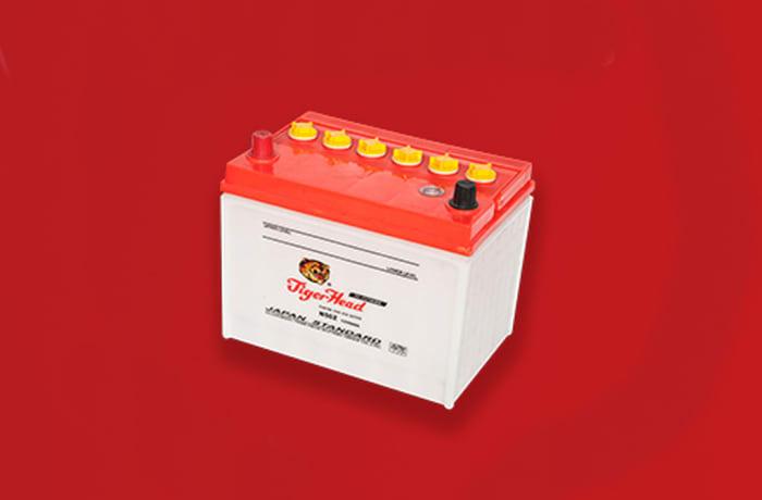 Tiger Car Battery