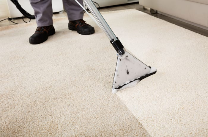 Wet and steam carpet cleaning image
