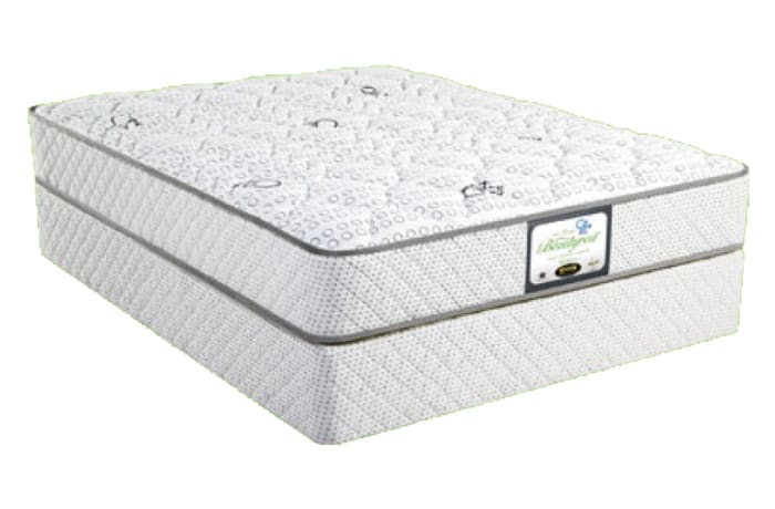 The Simmons Back Care Mattress Bed