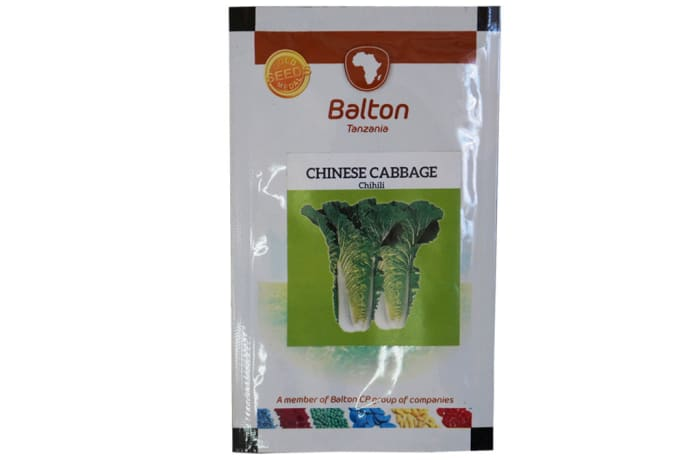 Chinese Cabbage - Chihili