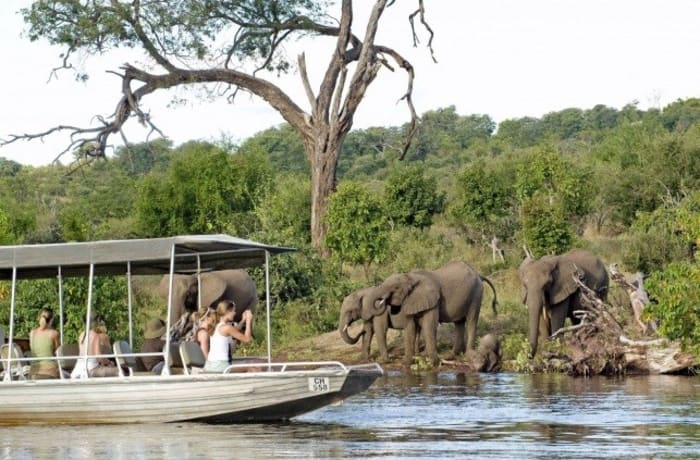 Chobe Day Trip image