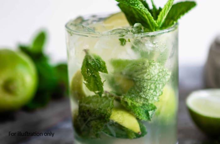 Classic Cocktails - Mojito
