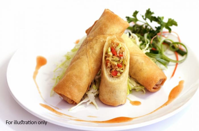 Tapas Style Small Dishes - Vegetable Spring Roll