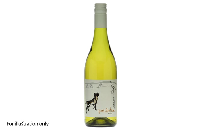 White Wine - South Africa - Painted Wolf – Peloton Blanc