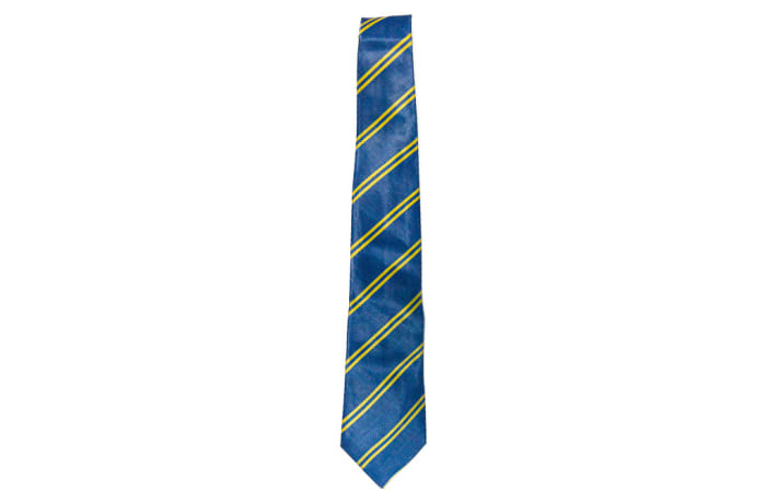 Blue with Yellow Stripes Neck Tie