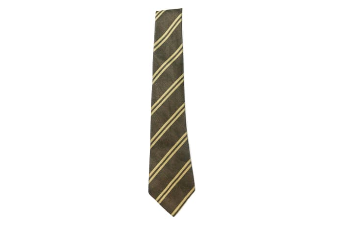 Brown with Light Brown Stripes Neck Tie