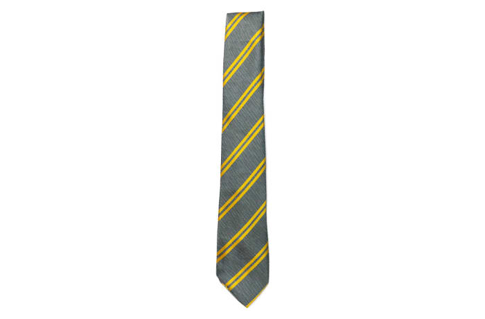 Gray with Gold Stripes Neck Tie