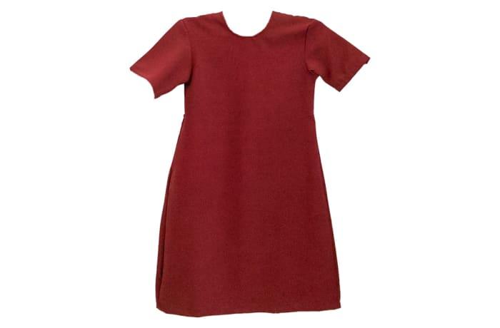 Maroon Primary Dress