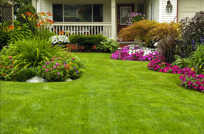 Gardening and lawn mowing (Monthly)