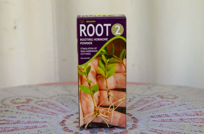 Makhro Root 2 - Rooting Hormone