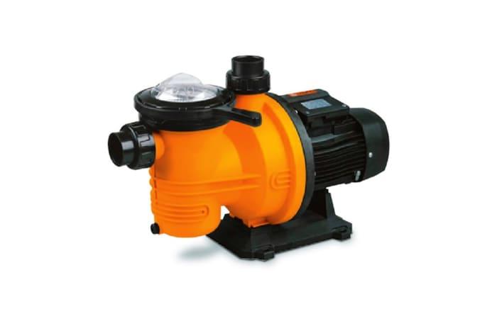 Dayliff DPL1100VS 1.5HP swimming pool pump