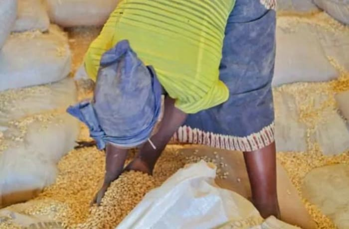 Provides market access to small scale farmers in rural areas image