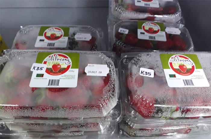 Life-Song Strawberries