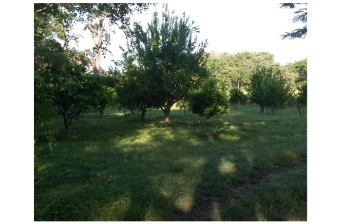 15Ha Farm For Sale in Kamfinsa