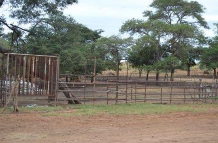 1,050m² Farm For Sale in Mazabuka