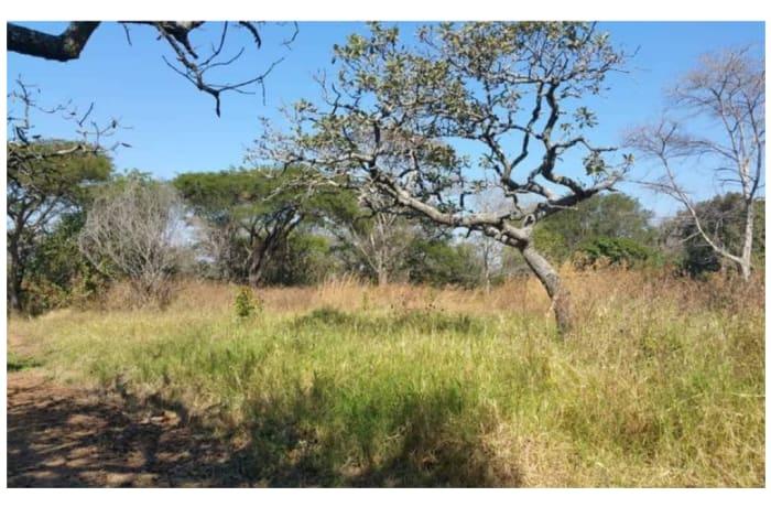 20Ha Farm For Sale in Chisamba