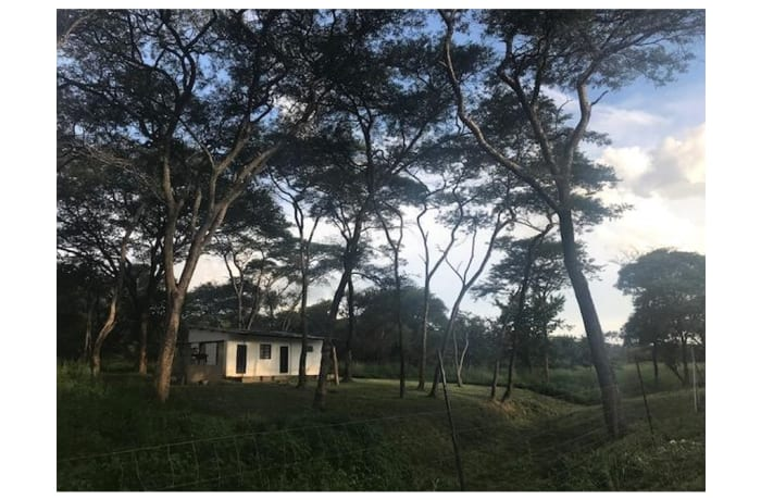 2Ha Vacant Land For Sale in Leopards Hill