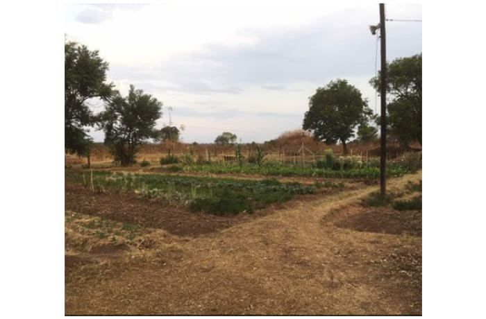 462m² Farm For Sale in Along Kafue River