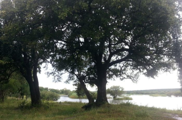 6Ha Vacant Land For Sale in Livingstone