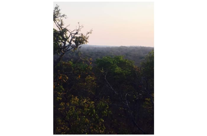 Vacant Land For Sale in Leopards Hill