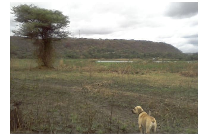 Vacant Land For Sale in Kafue Town