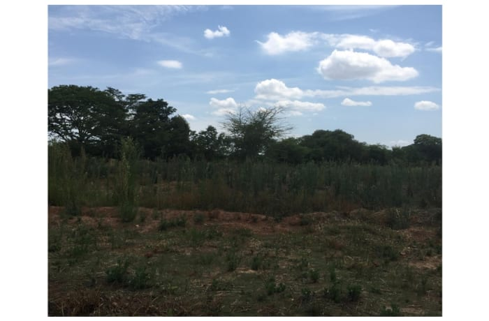 Vacant Land For Sale in Ngwerere