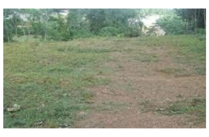 Vacant Land For Sale in Olympia