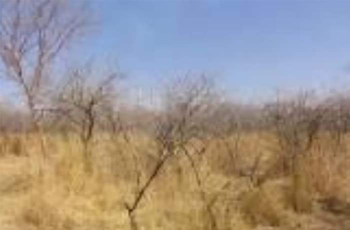 1.5 Acres Vacant Land For Sale in Leopards Hill, Lusaka
