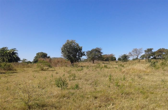 2,000 sq m Vacant Land For Sale in State Lodge, Lusaka