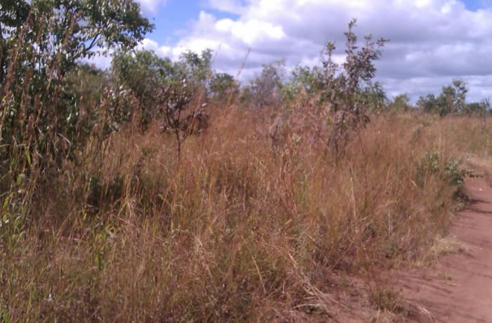 45Ha Vacant Land For Sale in Chisamba, Central