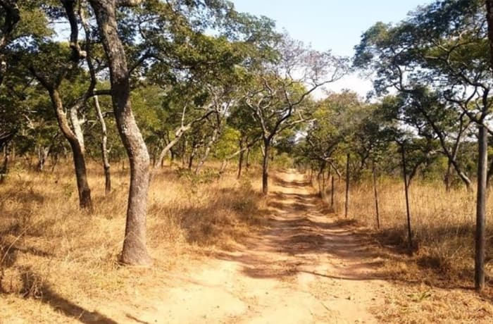 70,820 sq m Vacant Land For Sale in Leopards Hill, Lusaka