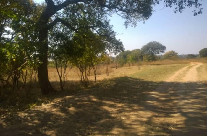 80,920 sq m Vacant Land For Sale in State Lodge, Lusaka