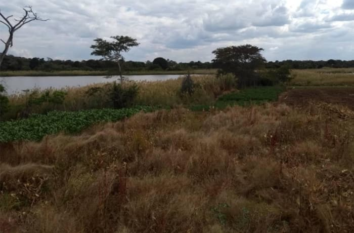 23Ha Farm For Sale in Chibombo, Central