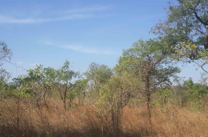 Vacant Land For Sale in Palabana, Lusaka