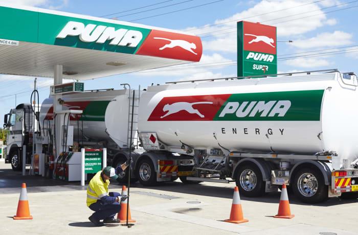 Fuel Security