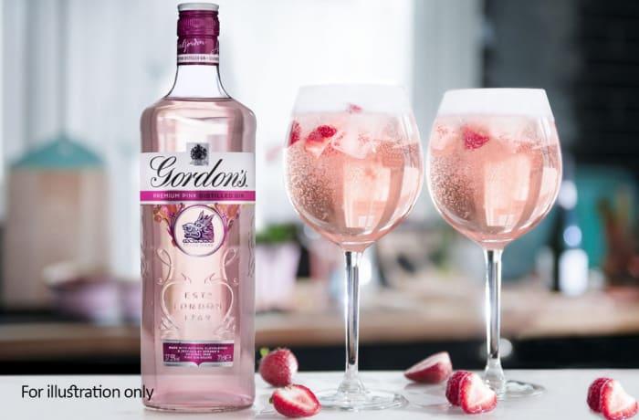 Gin - Gordon's Gin