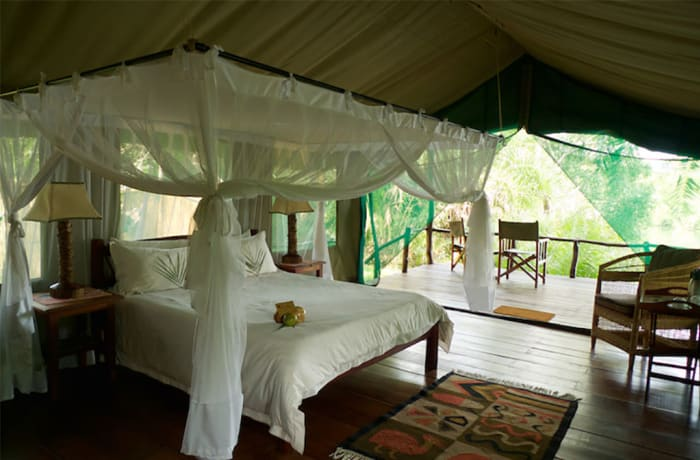 Kaingu Safari Lodge - Kafue National Park