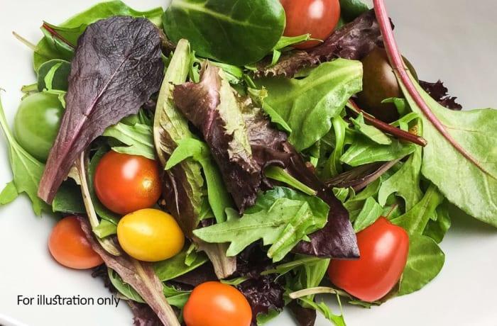 Starters - Vegetarian - Garden Salad
