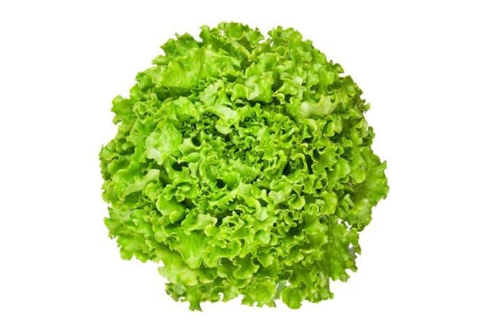 Lettuce Loose Leaf Salad Greens
