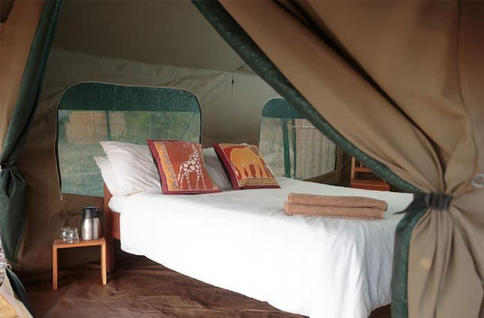 Nkonzi Camp - South Luangwa National Park