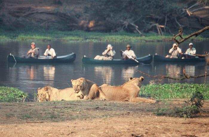 Livingstone Activities - Lower Zambezi Canoeing