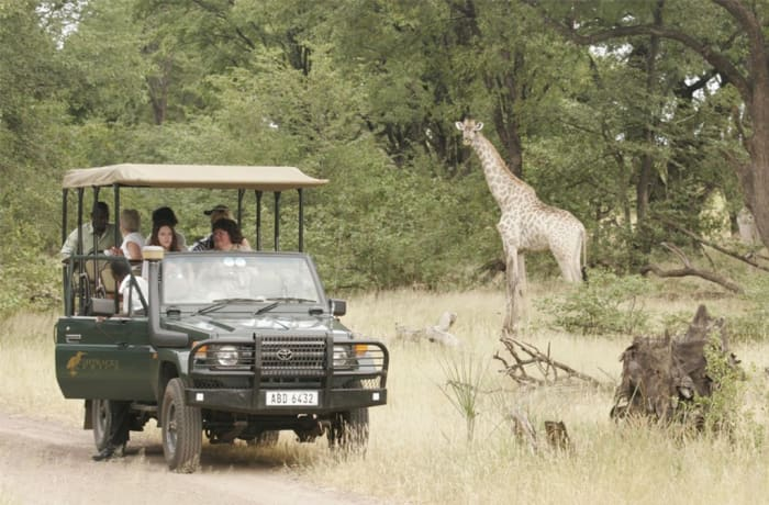 Livingstone Activities - Tours & Game drives