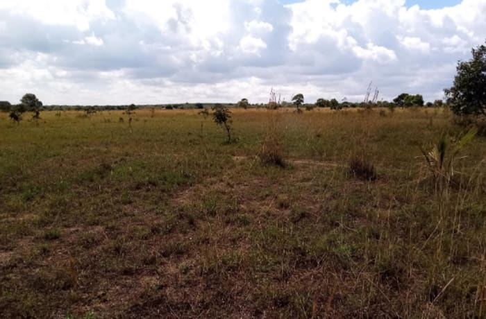 10 hectare farm vacant land for sale in kafue Lusaka