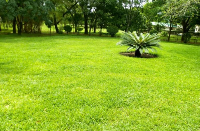 2500 m² residential vacant land for sale in Kalundu Lusaka