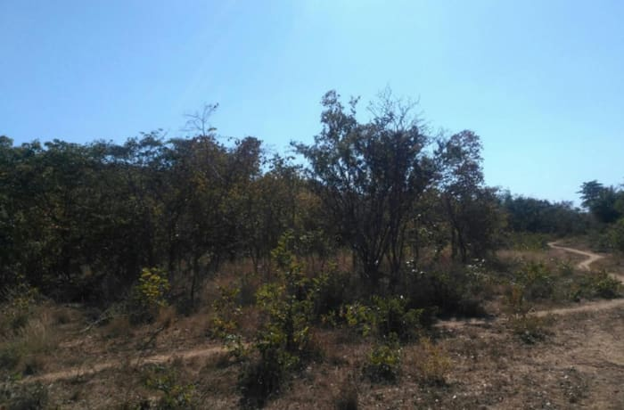 5 acres vacant land for sale in Shimabala, Lusaka