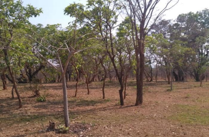 Vacant land for sale in Leopards Hill Lusaka
