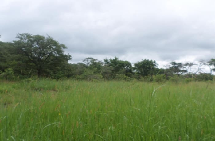 5 acres vacant land for sale in Leopards Hill, Lusaka